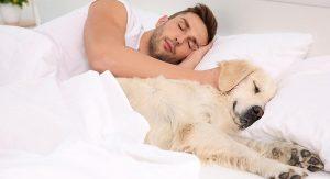 Hombre durmiendo con su mascota